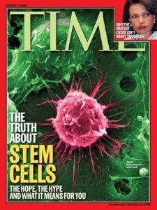 afa stem cell